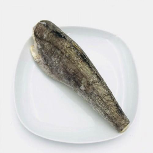 小牙鱼(约1.3kg 左右/份/2-3条)
