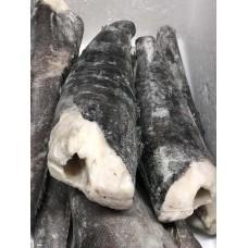 牙鱼(约1.5kg)