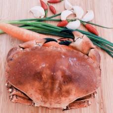 苏格兰面包蟹
