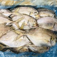 澳洲鲳鱼(400g)