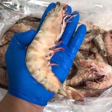 澳洲老虎虾 U10(1kg/袋)